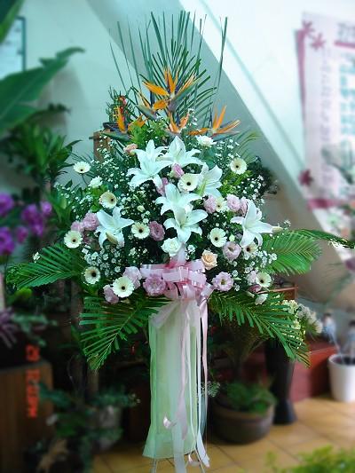 粉孔雀,叶材 尺寸:长110cm x 宽90cm  x高230cm 花器:欧式罗马柱 配送