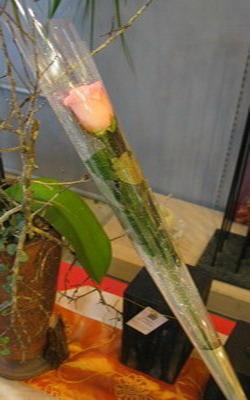 单朵玫瑰花钢管设计
